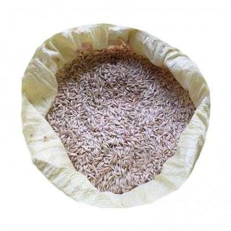Organik Siyez Buğdayı 10 Kg. Devrekani Deva Gıda - 1