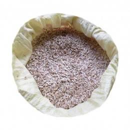 Siyez Buğdayı (Kabuklu) 10 Kg. Devrekani Deva Gıda - 1
