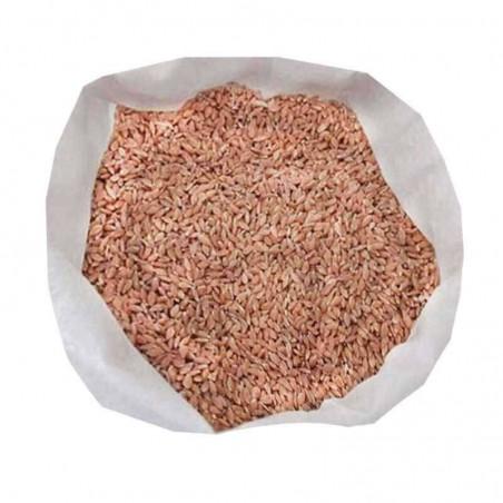 Siyez Buğdayı (Taneli) 10 Kg. Devrekani Deva Gıda - 1
