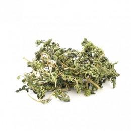 Isırgan Otu Yaprağı 25 gr Devrekani Deva Gıda - 2