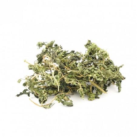 Isırgan Otu Yaprağı 50 gr Devrekani Deva Gıda - 1